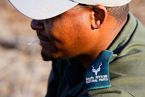 Portrait of a South African Parks Ranger whilst supervising a walking safari, Kruger National Park, Transvaal, South Africa, September 2008. No release available. - Oriol Alamany
