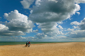 People and a dog walking along Winterton Beach. Norfolk, UK, September. - Ernie Janes