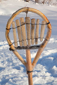 A traditional Selkup shovel for removing pieces of ice from the water while checking fishing nets in a frozen river, Krasnoselkup, Yamal, Western Siberia, Russia 2012 - Bryan and Cherry Alexander