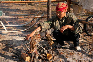 Rita Markova, a young Selkup woman, cooking fish (golden eye) over an open fire at a Selkup summer camp in the forest, Krasnoselkup, Yamal, Western Siberia, Russia - Bryan and Cherry Alexander