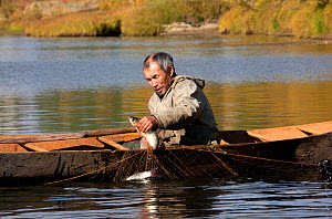 On an autumn day, Gennadiy Kubolev, a Selkup man, about to go fishing in his 'Anty' (traditional dugout boat) on the River Shirta, Krasnoselkup, Yamal, Western Siberia, Russia  -  Bryan and Cherry Alexander