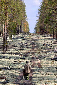 Gennadiy Kubolev, a Selkup man, sets off along a seismic line cut in the forest to hunt with his dog,  Krasnoselkup, Yamal, Western Siberia, Russia - Bryan and Cherry Alexander