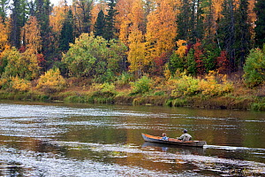 On an autumn day, Gennadiy Kubolev, a Selkup man, takes his grandaughter out fishing in his 'Anty' (traditional dugout boat) on the River Shirta, Krasnoselkup, Yamal, Western Siberia, Russia  -  Bryan and Cherry Alexander