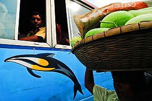 Man carrying melons watched by people on a bus, Dhaka, Bangladesh June 2012.  -  Enrique Lopez-Tapia