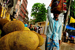 Kathal / jackfruits on a market stall, with a man walking past carrying cloths on his head, Dhaka, Bangladesh, June 2012. - Enrique Lopez-Tapia