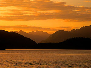 Sunset clouds over Meares Island in Grice Bay, Pacific Rim National Park, Vancouver Island, British Columbia, Canada  -  Oriol Alamany