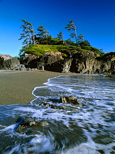 Waves along  the beach on South Beach Trail, Pacific Rim National Park. Vancouver Island, British Columbia, Canada - Oriol Alamany