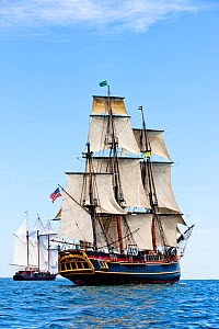 Tall ship 'Bounty', which sank off the coast of North Carolina during Hurricane Sandy in October 2012, seen here near to Rhode Island, USA, July 2012. - Onne van der Wal