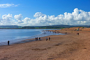 Walkers on the beach at Exmouth, Exe Estuary, Devon, England, 2012.  -  Rob Cousins