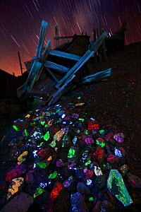 A wide variety of fluorescent minerals including scheelite (blue/white), calcite (red), silica coatings containing uranyl ions (green), fluorite (pink), and 'desert varnish' (yellow/orange), populate...  -  Floris van Breugel