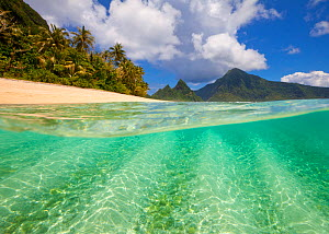 Turquoise waters of the lagoon along Ofu's National Park beach, American Samoa. January 2012.  -  Floris van Breugel