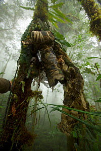 Camouflaged camera set up on tree trunk to look down at Parotia wahnesi court, Papua New Guinea, 2011  -  Tim Laman/Nat Geo Image Collection