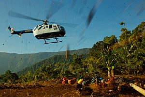 Helicopter landing at Sombom helipad, with expedition gear, Papua New Guinea, 2011  -  Tim Laman/Nat Geo Image Collection