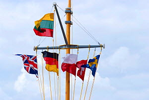 Mast displaying flags of many countries on a blustery day in the Baltic seaport of Klaipeda, Lithuania, August 2007.  -  UNCATALOGUED