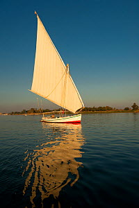 Traditional Egyptian felucca on the Nile at sunset, Egypt, January 2010.  -  UNCATALOGUED