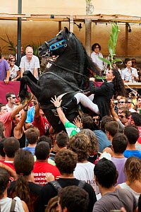 Lady riding a black Menorquin stallion, performing the bot or walking courbette of the Doma Menorquina, during the festival Mare de Deu de Gracia, in Mahon, Menorca, Spain 2012.  Tourists are trying t...  -  Kristel Richard