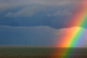 Sherringham off shore windfarm in distance, and rainbow during storm, Weybourne, Norfolk, November - Ernie Janes