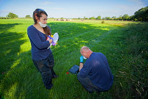 Defra Field Workers prepare personal protection equipment and vaccine for use on European Badgers (Meles meles) as part of bovine tuberculosis (bTB) vaccination trials on farmland, with cows in the ba... - Neil Aldridge