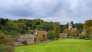View of the village Naunton, showing the village church of St. Andrew's, Cotswolds, Gloucestershire, UK, October 2012  -  Gary K. Smith