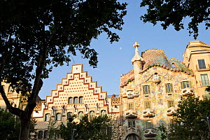 Two modernist buildings : left, Casa Amatller by architect Puig i Cadafalch and Casa Batll on the right by architect Antoni Gaudi, with tree in the foreground, Eixample District, Barcelona City, Spain...  -  Juan Manuel Borrero