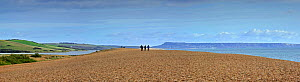 Fleet Lagoon at Abbotsbury and tourists walking on Chesil Beach tombolo, one of three major shingle structures in Britain along the Jurassic Coast, World Heritage Site, Dorset, UK, November 2012. No r...  -  Philippe Clement