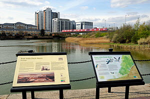 East India Dock Basin now an urban wildlife reserve with interpretive boards in foreground and DLR train crossing in front of modern buildings, East London, UK  -  Pat  Tuson