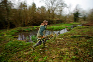 A member of staff from The Wildwoood Trust carrying branches as trees are cut to improve water vole habitat on a stream in Kent by allowing growth of bankside vegetation, East Malling, Kent England, F... - Terry Whittaker / 2020VISION