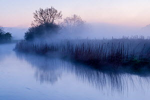 River Stour with early morning mist and frost, near Wimborne Minster, Dorset, UK. April 2012. Did you know? There are five different River Stours in the UK.  -  Ross Hoddinott / 2020VISION