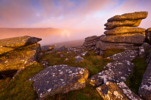 Moorland view from Littaford Tor, with the enlarged shadow of the photographer, also known as a Brocken Spectre, with a Glory caused by refracting water droplets cast onto mist by the rising sun, Two...  -  Ross Hoddinott / 2020VISION