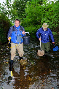 Fisheries assistant Stephanie Kershaw and volunteer John Dumont at the Eden Rivers Trust electrofishing for juvenile Atlantic salmon (Salmo salar) and Brown trout (Salmo trutta) as part of a capture a... - Linda Pitkin / 2020VISION