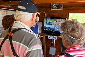 Visitors watching television screen showing the Dyfi Osprey Project live nest cam, Powys, Wales, UK, May 2012. - Mark Hamblin / 2020VISION