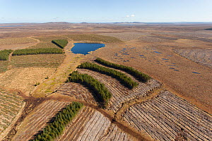 Aerial view of Forsinard Flows blanket bog, with conifer plantations, Forsinard, Caithness, Scotland, UK, May 2012.  -  Peter Cairns / 2020VISION