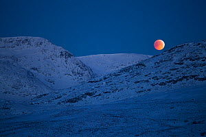 Lunar eclipse over Glen Spean, Creag Megaidh National Nature Reserve, Scotland, UK, 21st December 2010.  -  Mark Hamblin / 2020VISION