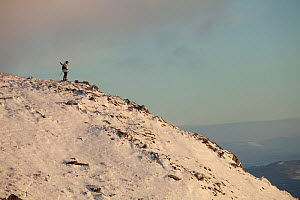 Deer stalker standing on mountain ridge in winter, Creag Meagaidh National Nature Reserve, Scotland, UK, December 2010.  -  Mark Hamblin / 2020VISION