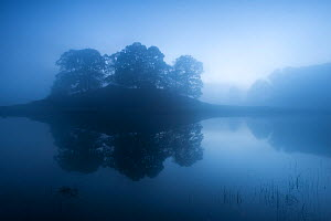 Reflected trees in mist and low light over Lake Grasmere, The Lake District, Cumbria, UK. October 2012.  -  Ross Hoddinott