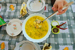 Fish soup serving at Mama Sika's guesthouse, Sfintu Gheorghe, Danube delta rewilding area, Romania  -  Wild Wonders of Europe / Widstrand