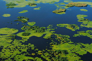 Aerial view over the Danube delta wetlands rewilding area, Romania June 2012  -  Wild Wonders of Europe / Widstrand
