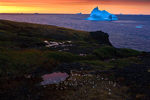 Iceberg off the coast of Disco bay at sunrise, Qeqertarsuaq Greenland, August 2009. Exclusive Japanese calendar rights for 2014.  -  Wild Wonders of Europe / Jensen