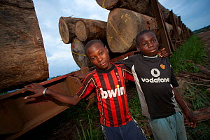 Two boys stand close to railway trucks loaded with  hardwood timber logs for export from Gabon - Jabruson