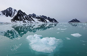 Coastal ice, Svalbard, Norway, July 2011 - Staffan Widstrand