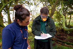 Badger (Meles meles) bovine tuberculosis vaccination team from Cheshire Wildlife Trust and Shropshire Wildlife Trust. Details are kept of all traps that have been tripped, and basic health checks are...  -  Tom Marshall
