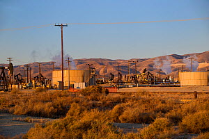 Oil derricks and storage tanks in a working oil field, Southern Kern County, California, USA  -  David Welling