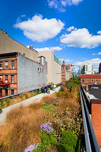 People walking on the High Line, a mile long New York City park on a section of former elevated railroad along the Lower West Side, New York, USA 2011  -  Gavin Hellier
