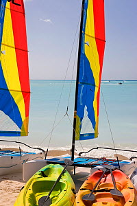 Colourful sailboats on Jolly Beach, Antigua, Antigua and Barbuda, Leeward Islands, Lesser Antilles, Caribbean, West Indies, 2012  -  Gavin Hellier