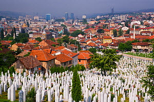 Elevated view over the city and war cemetary at Sarajevo, Bosnia and Herzegovina, Balkans 2007  -  Gavin Hellier