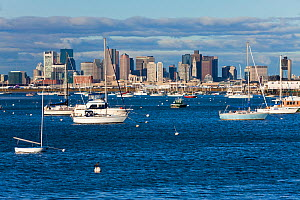 City skyline and boats moored in harbour at dawn, Boston, Massachusetts, USA 2009 - Gavin Hellier
