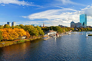 Skyline viewed over the Charles river, Beacon Hill and downtown, Boston, Massachusetts, USA 2009  -  Gavin Hellier