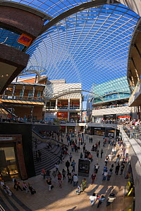 Inside Cabot Circus, constructed at a cost of �500 million, is an architectural masterpiece. The shopping centre's glass roof equal in size to one and a half football pitches, Bristol, Avon, UK 2009  -  Gavin Hellier