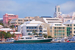 Luxury office buildings lining Hamilton harbour, Bermuda 2007  -  Gavin Hellier