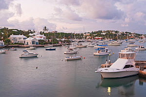 View across harbour with boats and coastal houses, Hamilton, Bermuda 2007 - Gavin Hellier